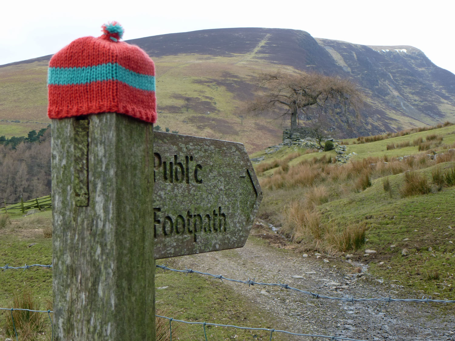 Footpath sign to Lonscale Fell wearing a woolly hat!