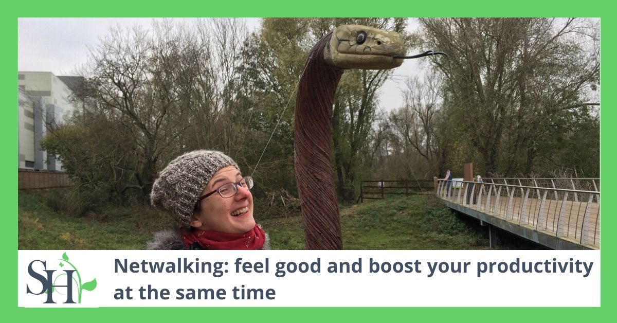 Netwalking: feel good and boost your productivity at the same time