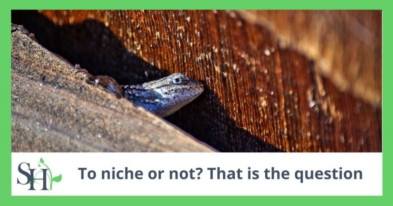 To niche or not? That is the question