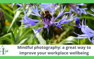 Mindful photography: a great way to improve your workplace wellbeing